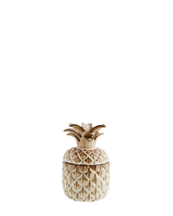 Ananass hoiupurk