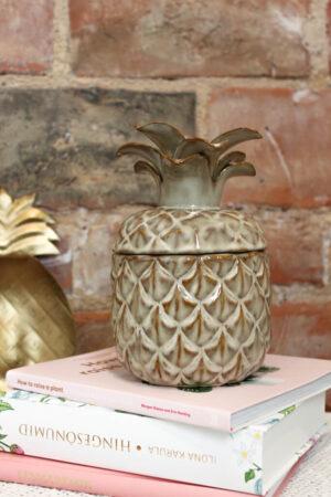 Hoiupurgid ananass