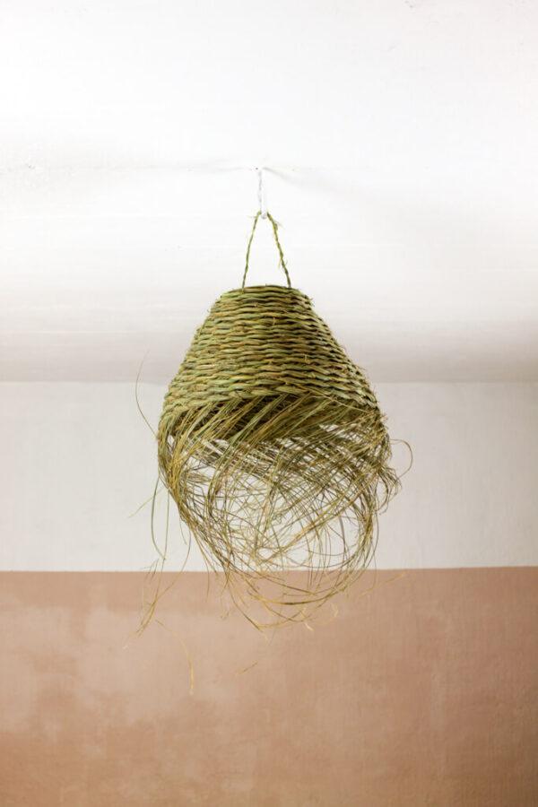 Lamp palmileht