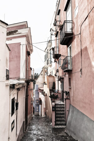 Roosa tänav
